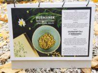 Soutěž o 5x Domácí biokalendář