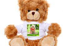 Soutěž o voucher na plyšového medvěda s fotkou v hodnotě 399 Kč